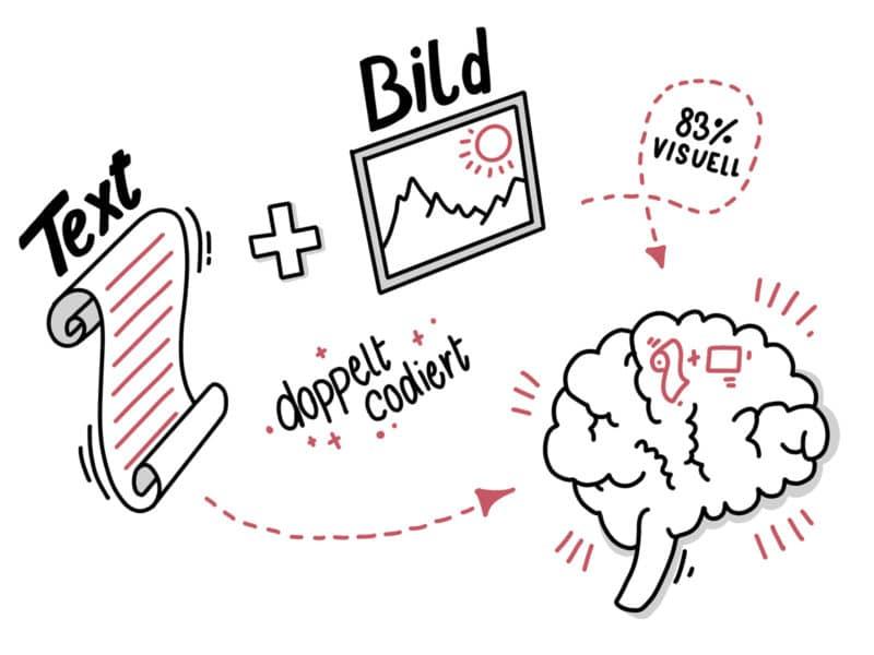 Sketchnote - Text und Bild werden doppelt codiert im Gehirn gespeichert
