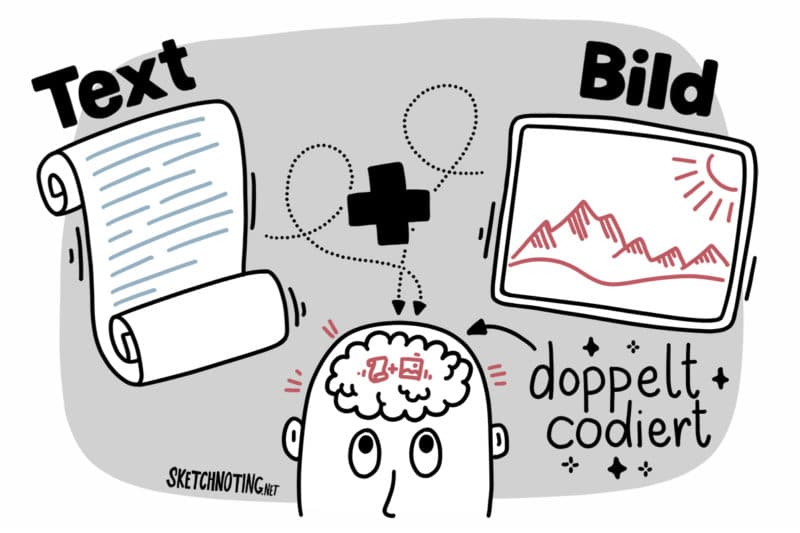 Doppelte Codierung der Informationen im Gehirn